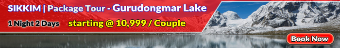 package tour Gurudongmar lake